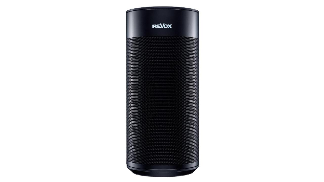 STUDIOART P100 Room Speaker